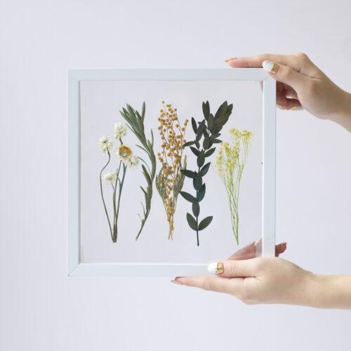 花や植物が浮いて見える!フローティングフレームの作り方<br><small>Floating Frame Herbarium</small>