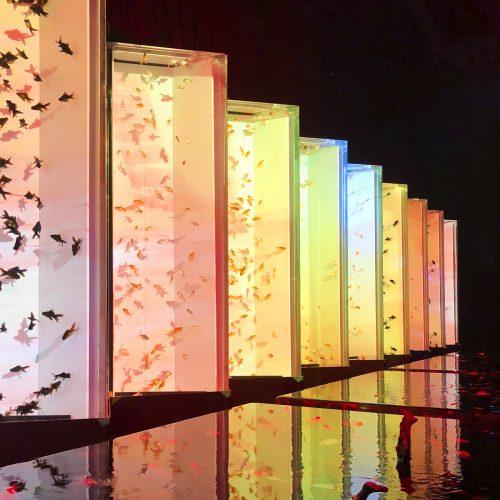 日本橋「アートアクアリウム」~江戸・金魚の涼~ レポート<br><small>ECO EDO ART AQUARIUM</small>